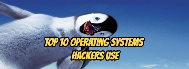 Top 10 Operating Systems Hackers Use