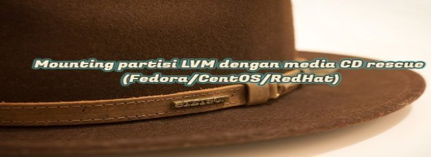 Mounting LVM partitions with rescue CD media (Fedora / CentOS / RedHat)