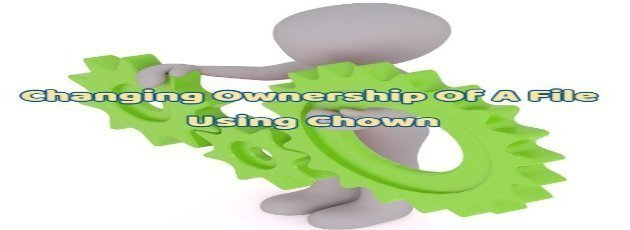 Changing Ownership Of A File Using Chown