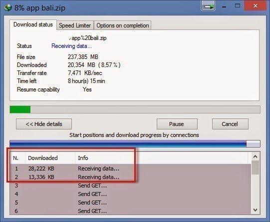 Download IDM Limit