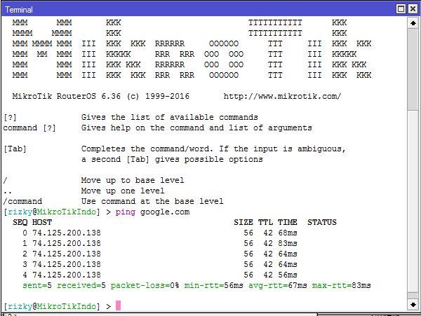 Ping Command in Mikrotik