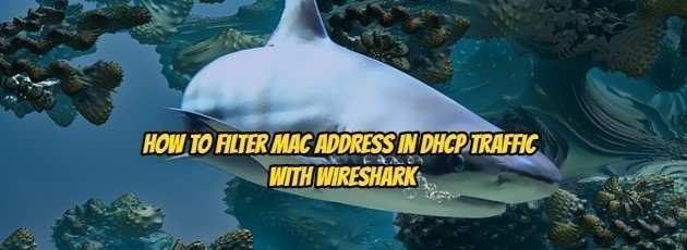 How to Filter MAC Address in DHCP Traffic with Wireshark?