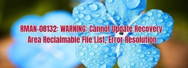 RMAN-08132: WARNING: Cannot Update Recovery Area Reclaimable File List, Error Resolution