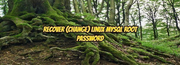 Recover (Change) Linux Mysql Root Password