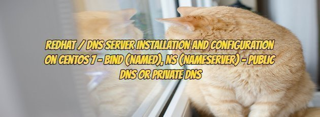 Redhat / DNS Server Installation and Configuration on Centos 7 - Bind (Named), NS (Nameserver) - Public DNS Or Private DNS