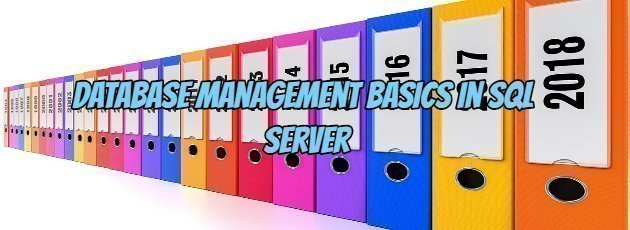 Database Management Basics in SQL Server