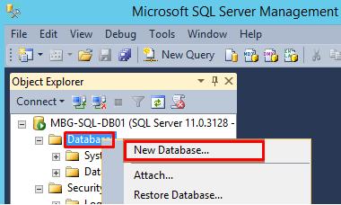Microsoft_SQL_Server_Management