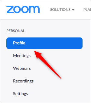 Zoom-Profile