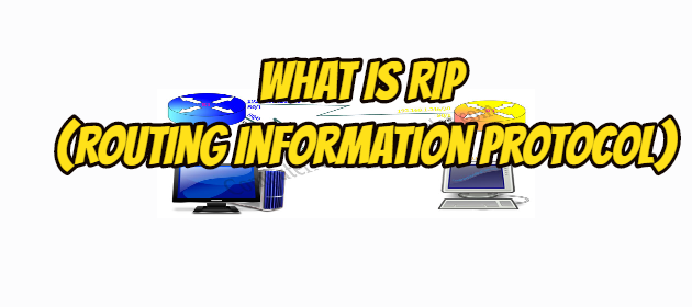 What is RIP (Routing Information Protocol)